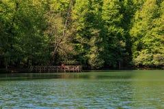 Lago Yedigoller Fotografia Stock