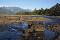 Lago Yelcho. River running into Lago Yelcho in the Aysen Region of southern Chile. Large body of fresh water surrounded by lush forest and snow capped mountains royalty free stock images