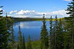 Lago Yellowstone Fotografia de Stock Royalty Free