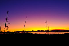 Lago Yellowstone - alba iniziale panoramica immagini stock libere da diritti