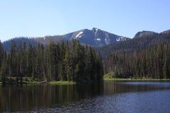 Lago Yellowstone, WY Imágenes de archivo libres de regalías