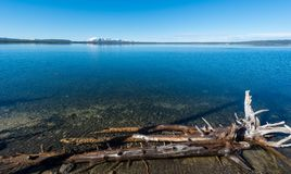 Lago Yellowstone, Wyoming Fotografia de Stock Royalty Free