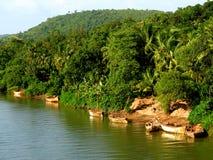 Lago-Yo de Dhamapur Foto de archivo