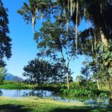 Lago Yojoa fotos de archivo
