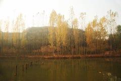 Lago Zhengzhou Donglin Fotos de Stock