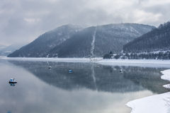 Lago Zlatar a Zlatibor Serbia Immagini Stock Libere da Diritti
