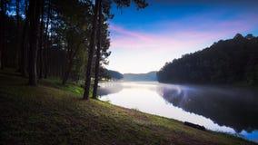 lagoa Fotografia de Stock