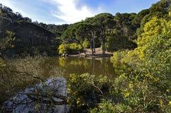 Lagoa Imagem de Stock Royalty Free