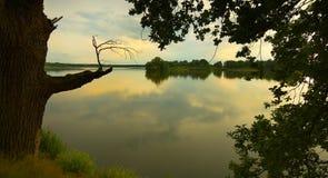 A lagoa Foto de Stock Royalty Free