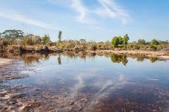lagoa Fotos de Stock Royalty Free