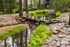 Lagoa artificial entre pinhos imagens de stock royalty free