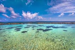 Lagoa azul com recife de corais Fotografia de Stock Royalty Free