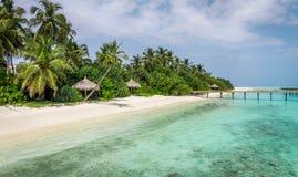 Lagoa azul e ilha tropical em Maldivas Imagem de Stock Royalty Free