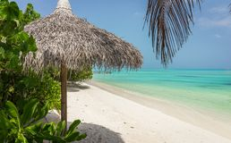 Lagoa azul e ilha tropical em Maldivas Fotografia de Stock Royalty Free