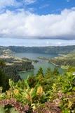 Lagoa Azul e Lagoa Verde con Ginger Lilys, sao Miguel Immagine Stock Libera da Diritti