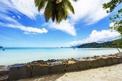Lagoa bonita com os barcos na água de turquesa atrás da licença da palma Fotografia de Stock