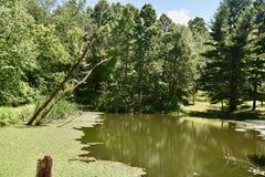 Lagoa cênico da exploração agrícola de Pensilvânia Fotografia de Stock Royalty Free