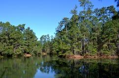 Lagoa calma Fotos de Stock