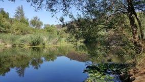 Lagoa calma foto de stock
