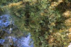 Lagoa colorida bonita Imagem de Stock