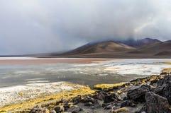 Lagoa colorida no platô andino alto, Bolívia fotos de stock