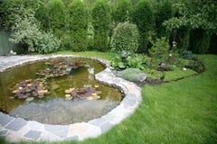 Lagoa com água-lilys em uma jarda em casa Fotos de Stock Royalty Free