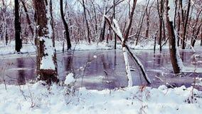 Lagoa congelada Fotos de Stock Royalty Free