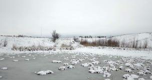 Lagoa congelada coberta com uma neve e as plantas cobertas com uma neve Paisagem do inverno video estoque