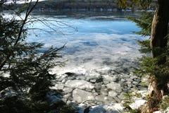 Lagoa congelada de McGrath através das árvores fotografia de stock royalty free