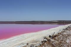 Lagoa cor-de-rosa da cabana do lago em Gregory portuário, Austrália Ocidental, Austrália fotografia de stock