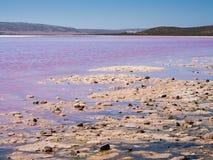 Lagoa cor-de-rosa de Hutt do lago, porto Gregory, Austrália Ocidental imagens de stock