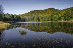 Lagoa da conservação da aterrissagem de Edgewood, Bolton, NY Fotos de Stock