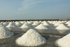Lagoa da evaporação de sal Fotografia de Stock