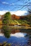 Lagoa da exploração agrícola Imagem de Stock Royalty Free