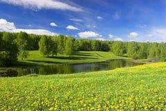 Lagoa da floresta Imagens de Stock