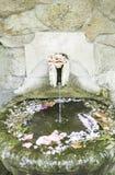 Lagoa da fonte Imagem de Stock Royalty Free