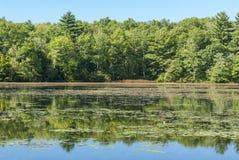 Lagoa da lixívia no parque estadual da região limítrofe fotos de stock royalty free