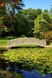 Lagoa da ponte e do lírio da pedra do estilo do artesão Imagens de Stock Royalty Free