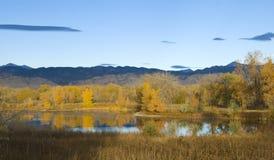 Lagoa da pradaria na luz solar brilhante Imagens de Stock