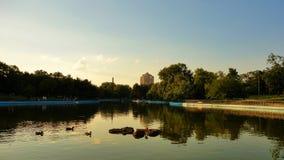 Lagoa da serenidade, tempo do por do sol Fotos de Stock