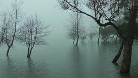 Lagoa das Furnas stock video footage