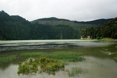 Lagoa das Sete Cidades,圣地米格尔,葡萄牙 库存照片