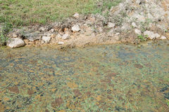 Lagoa de águas residuais Fotografia de Stock