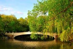 Lagoa de Central Park Fotos de Stock Royalty Free