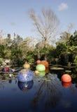Lagoa de Lilly com esferas de vidro Imagens de Stock Royalty Free