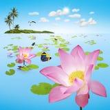 Lagoa de Lotus com ilha Fotos de Stock Royalty Free