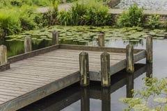 Lagoa de madeira de Pier Standing In A em um parque do país imagens de stock royalty free