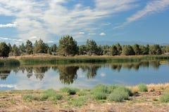 Lagoa de Mayfield imagem de stock royalty free