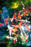 Lagoa de peixes de Koi Imagens de Stock