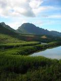 Lagoa de peixes de Menehune em Kauai, H Fotografia de Stock Royalty Free